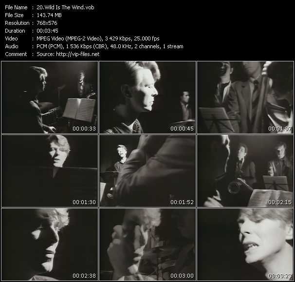 David Bowie HQ Videoclip «Wild Is The Wind»