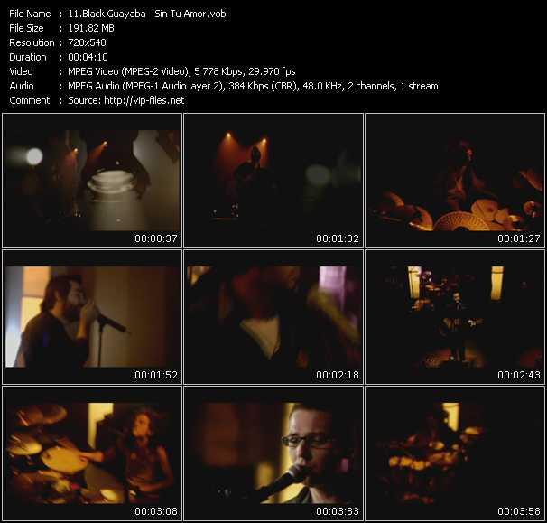 Black Guayaba HQ Videoclip «Sin Tu Amor»