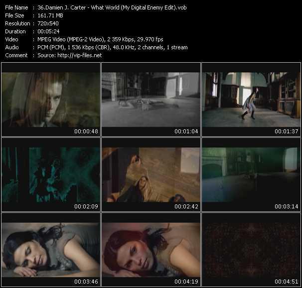 Damien J. Carter HQ Videoclip «What World (My Digital Enemy Edit)»