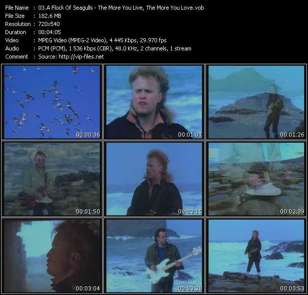 A Flock Of Seagulls video - The More You Live, The More You Love