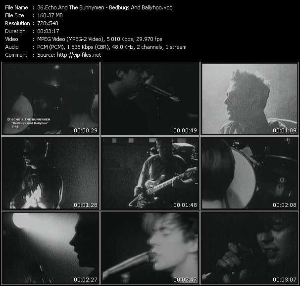 Echo And The Bunnymen HQ Videoclip «Bedbugs And Ballyhoo»