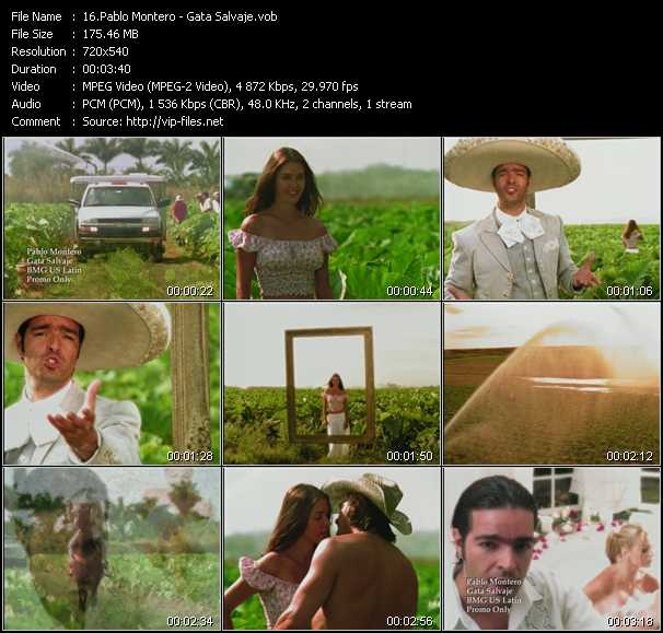 Pablo Montero video - Gata Salvaje