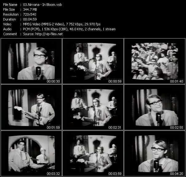 Nirvana video - In Bloom