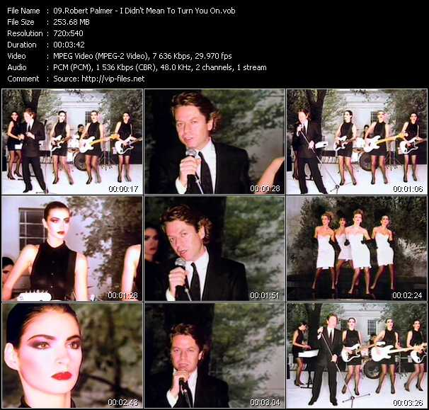 Robert Palmer video - I Didn't Mean To Turn You On
