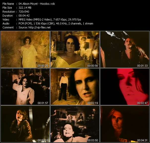 Alison Moyet music video Filejoker