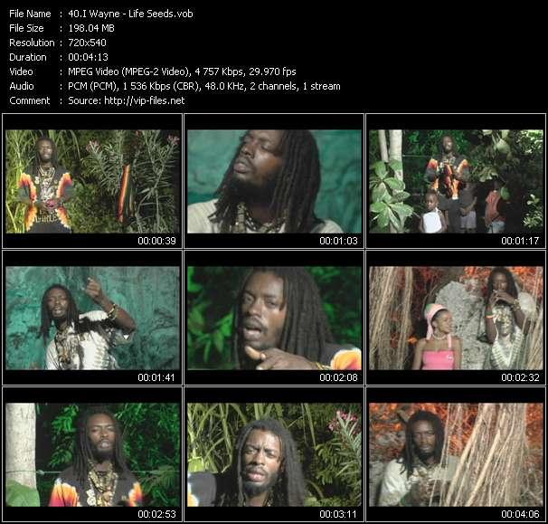 I Wayne video - Life Seeds