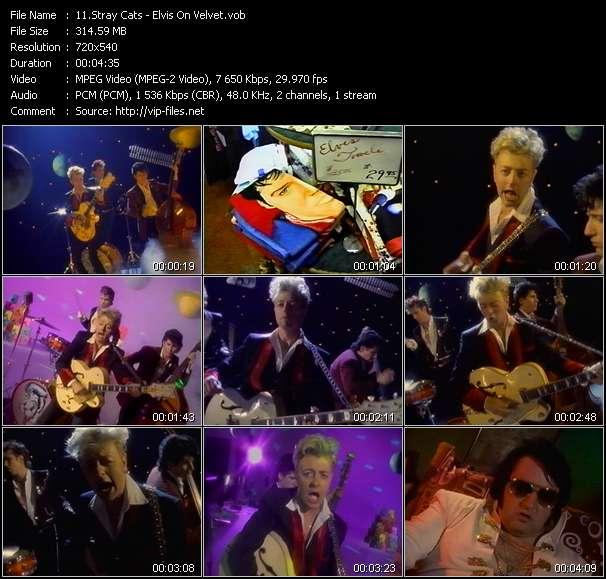 Stray Cats HQ Videoclip «Elvis On Velvet»