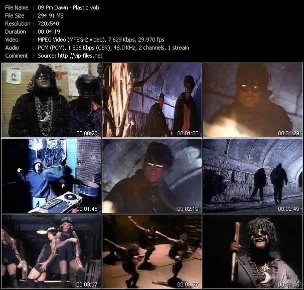 Pm Dawn video - Plastic
