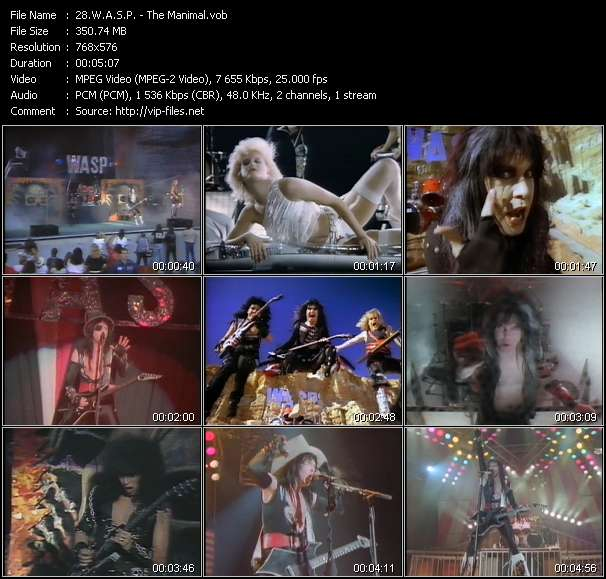 W.A.S.P. video - The Manimal