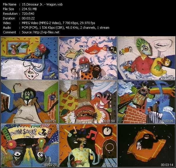 Dinosaur Jr. video - Wagon