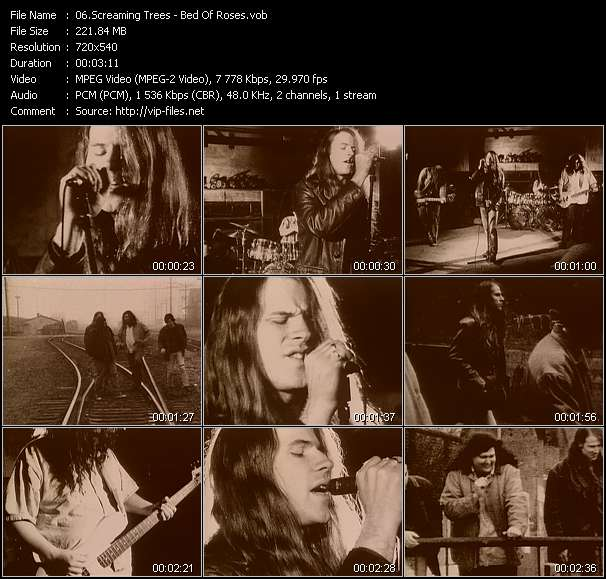 Screaming Trees HQ Videoclip «Bed Of Roses»