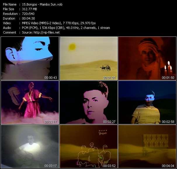 Bongos video - Mambo Sun