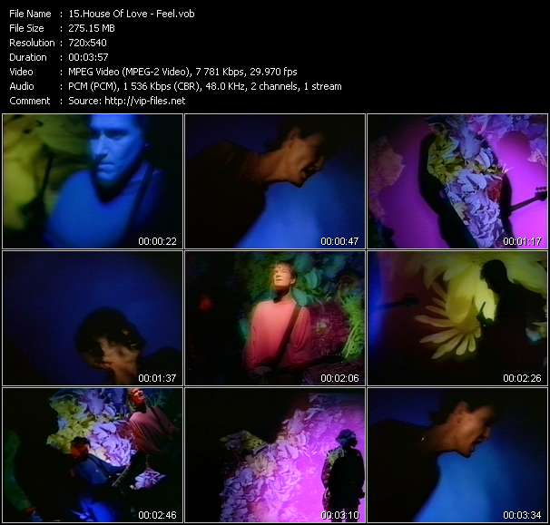 House Of Love video - Feel
