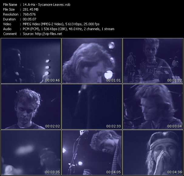 A-Ha video - Sycamore Leaves