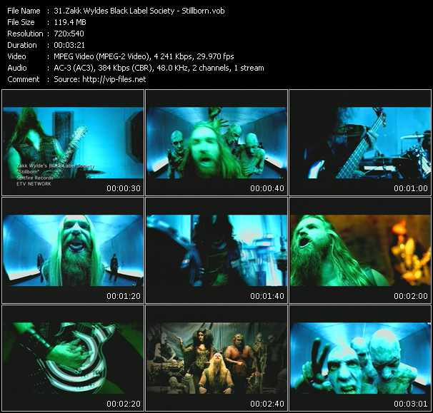 Zakk Wyldes Black Label Society video - Stillborn