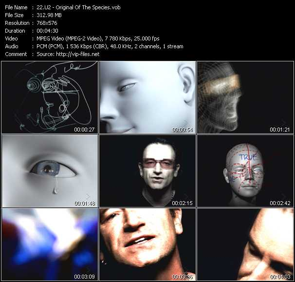 U2 video - Original Of The Species