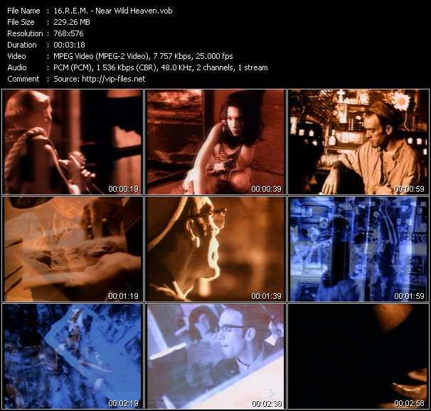 R.E.M. video - Near Wild Heaven