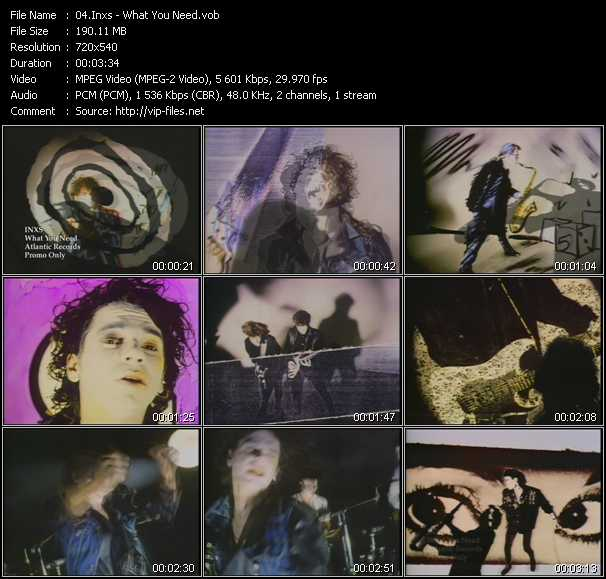 Inxs video - What You Need